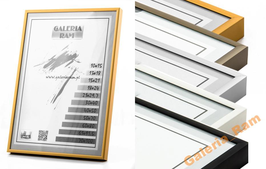 Rama Aluminiowa Alu G 70x100